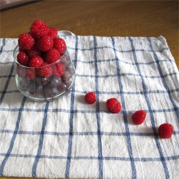 Beatrice Winkel - raspberry trap