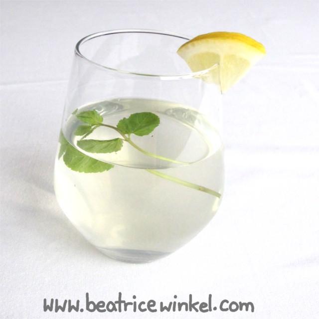 Holunderblütenlimonade mit Zitrone, Galgantwurzel und Minze