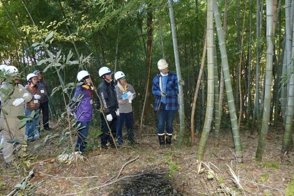 竹の切り方を学ぶ