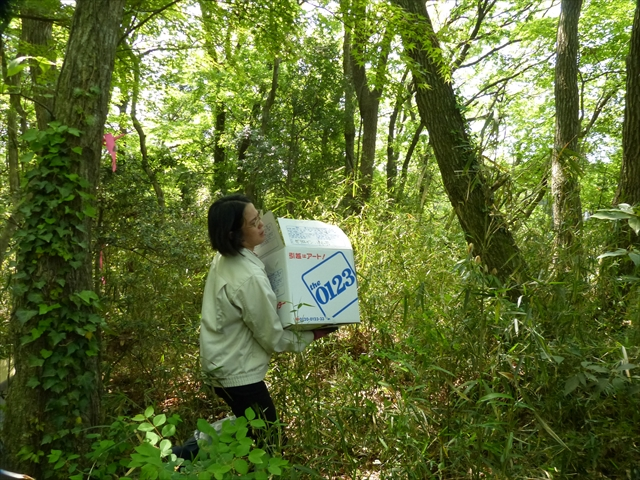 箱を樹林の外に運ぶ