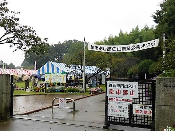 農業公園祭入口