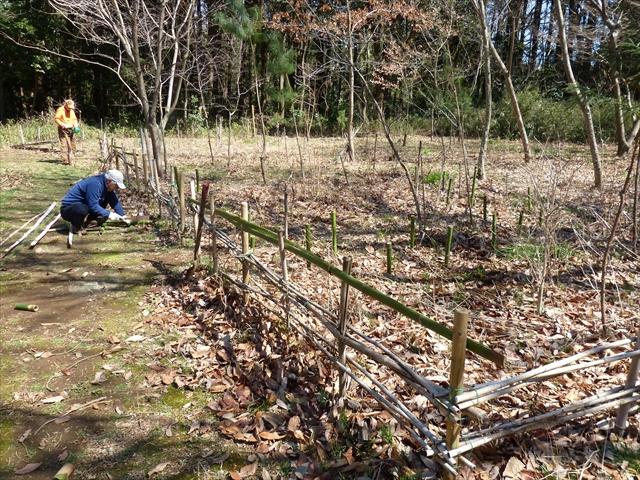 垣根の修復