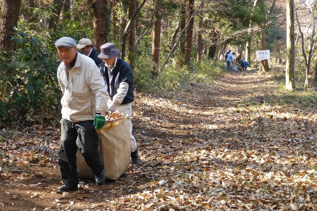 集めた落ち葉をビオネストに運びます