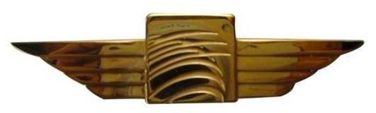 ALAS EN METAL LATON CHAPEADO MODELO G98798