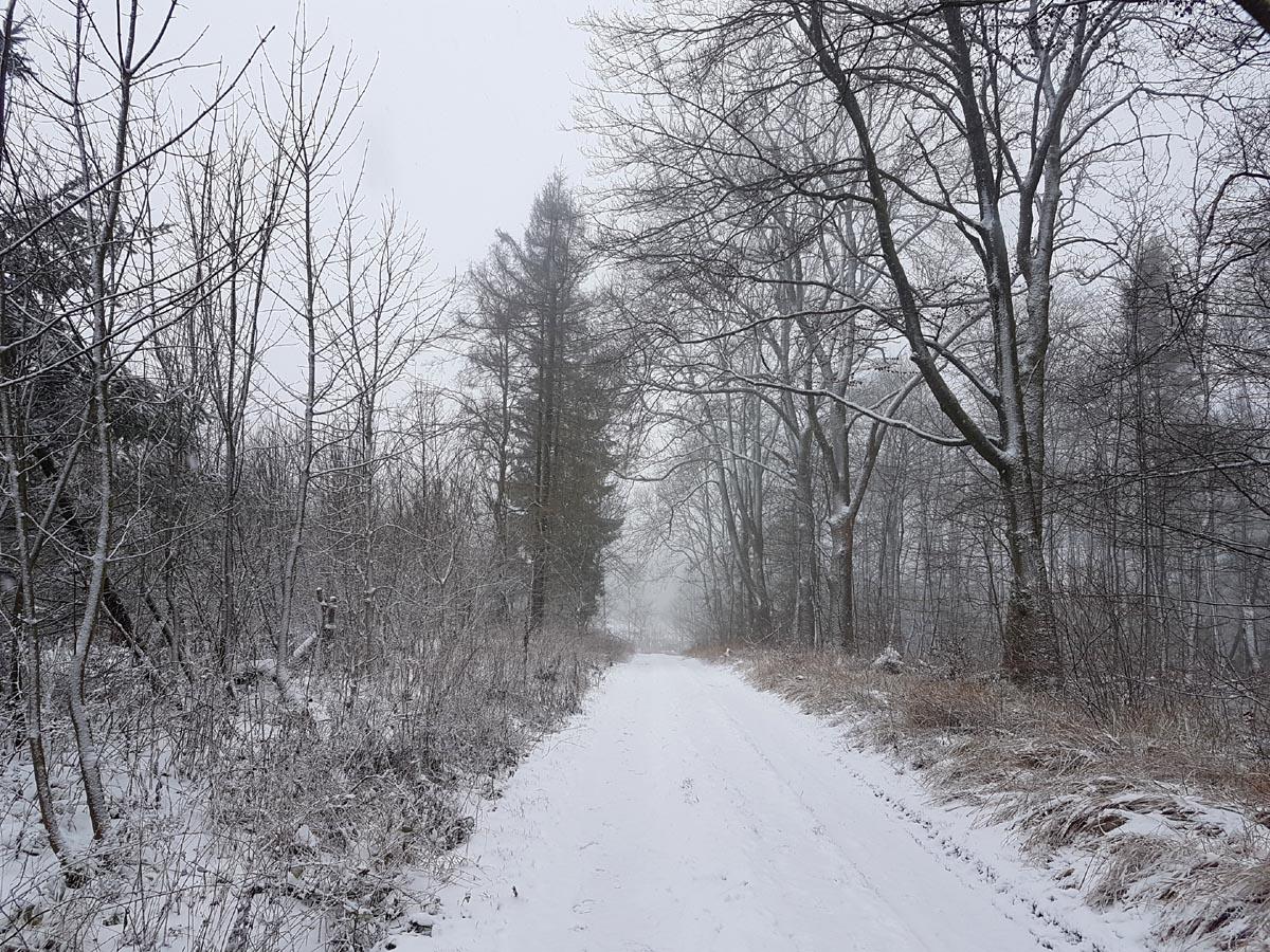 Winterwanderung zum Essigberg