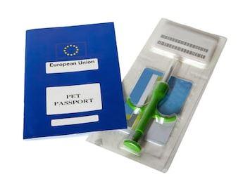 Image du carnet européen et de seringue avec la micropuce