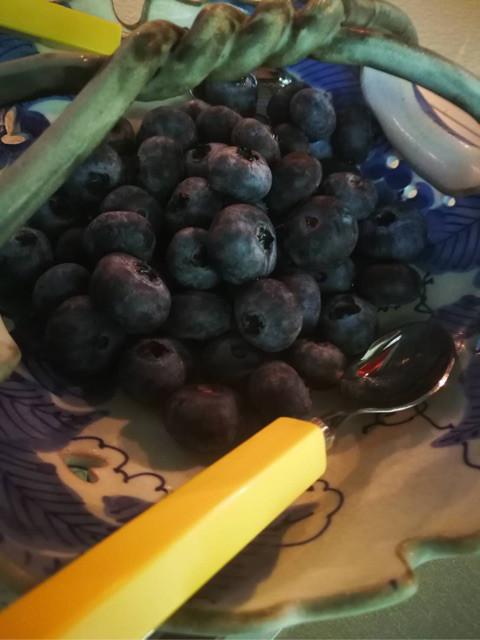 こんな大粒のブルーベリーをたまたま見つけて、 これも召し上がって頂きました