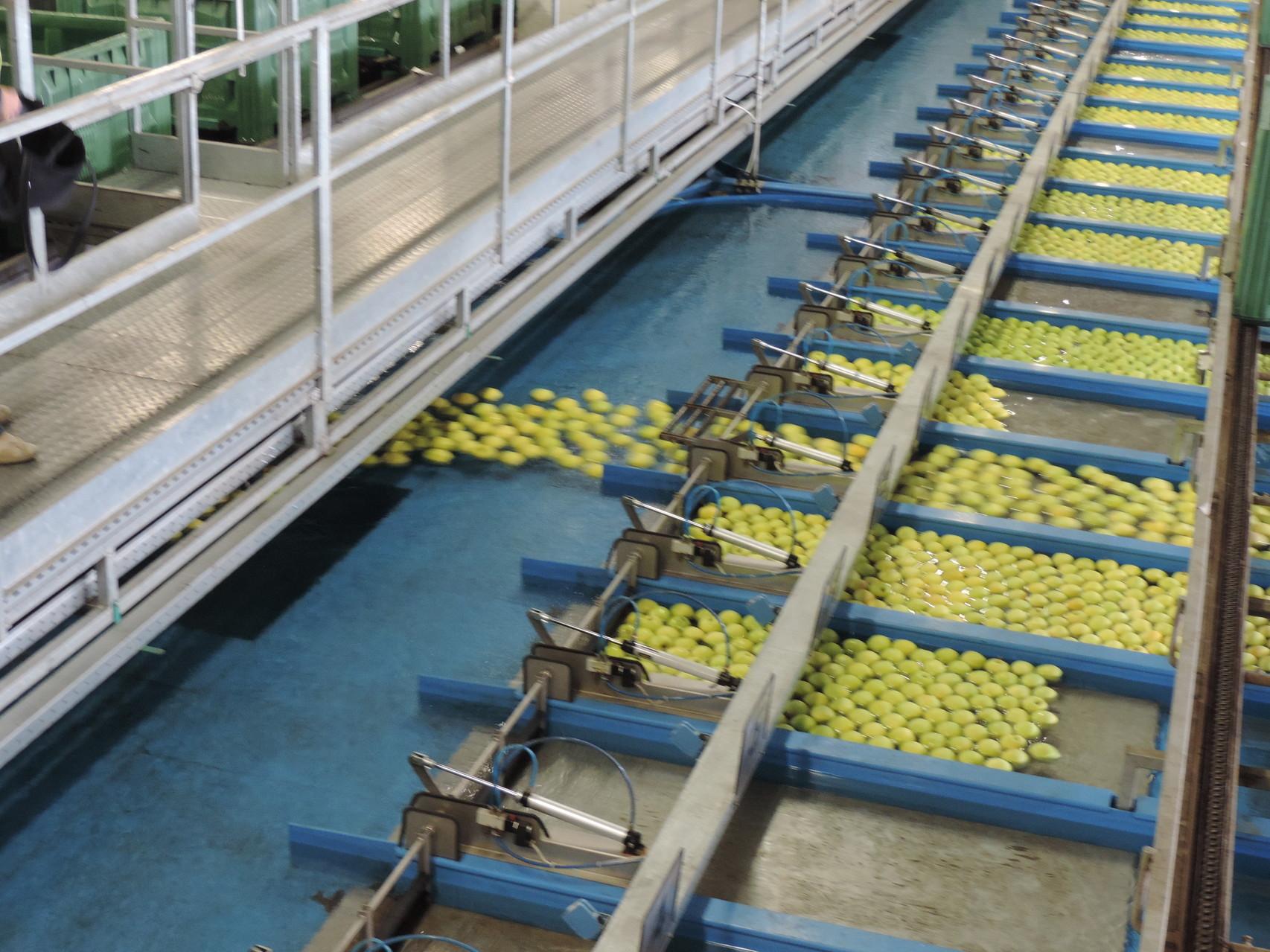Obstgenossenschaft Melix