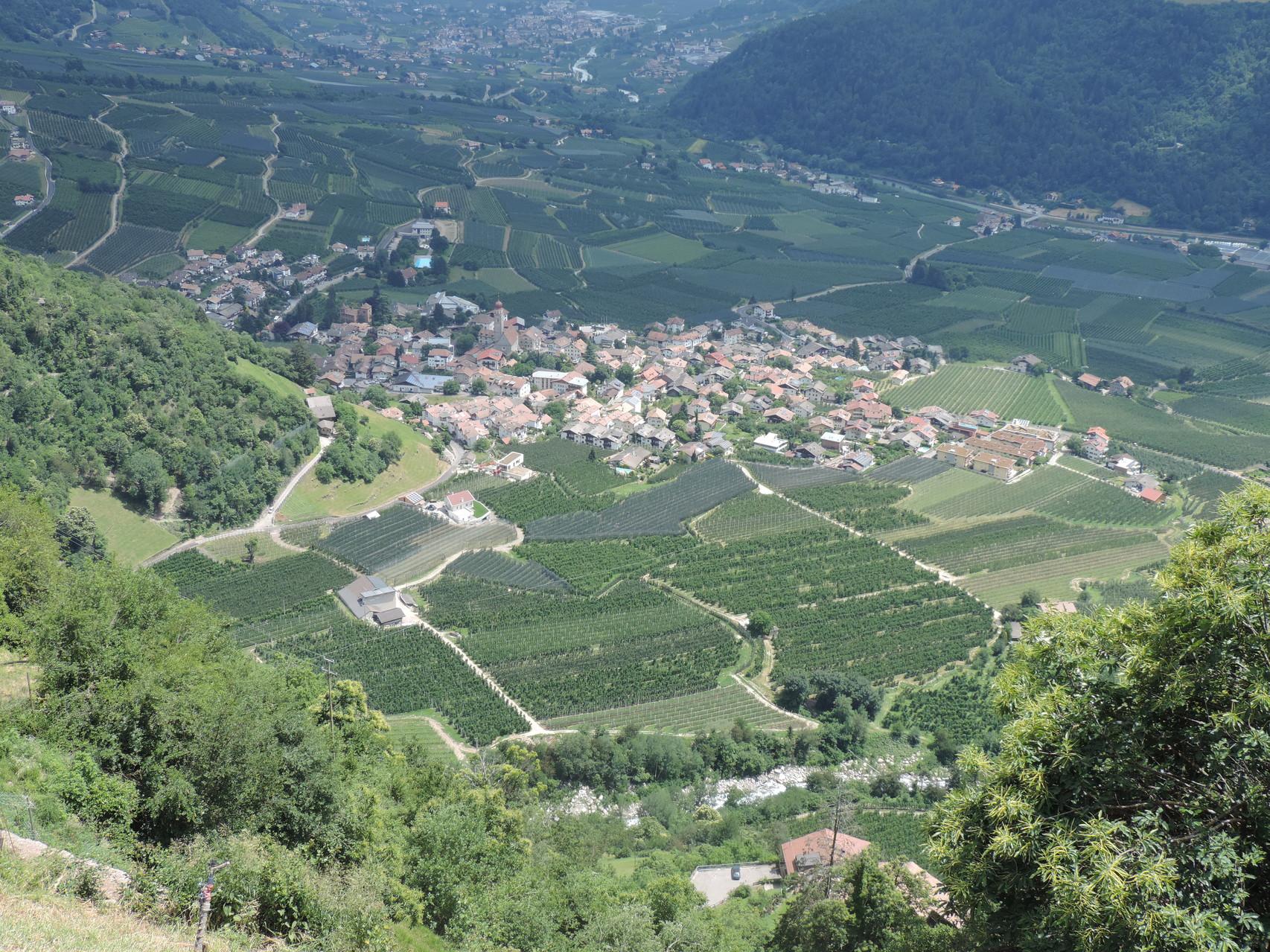 Blick über Patschins ins Vinschgau