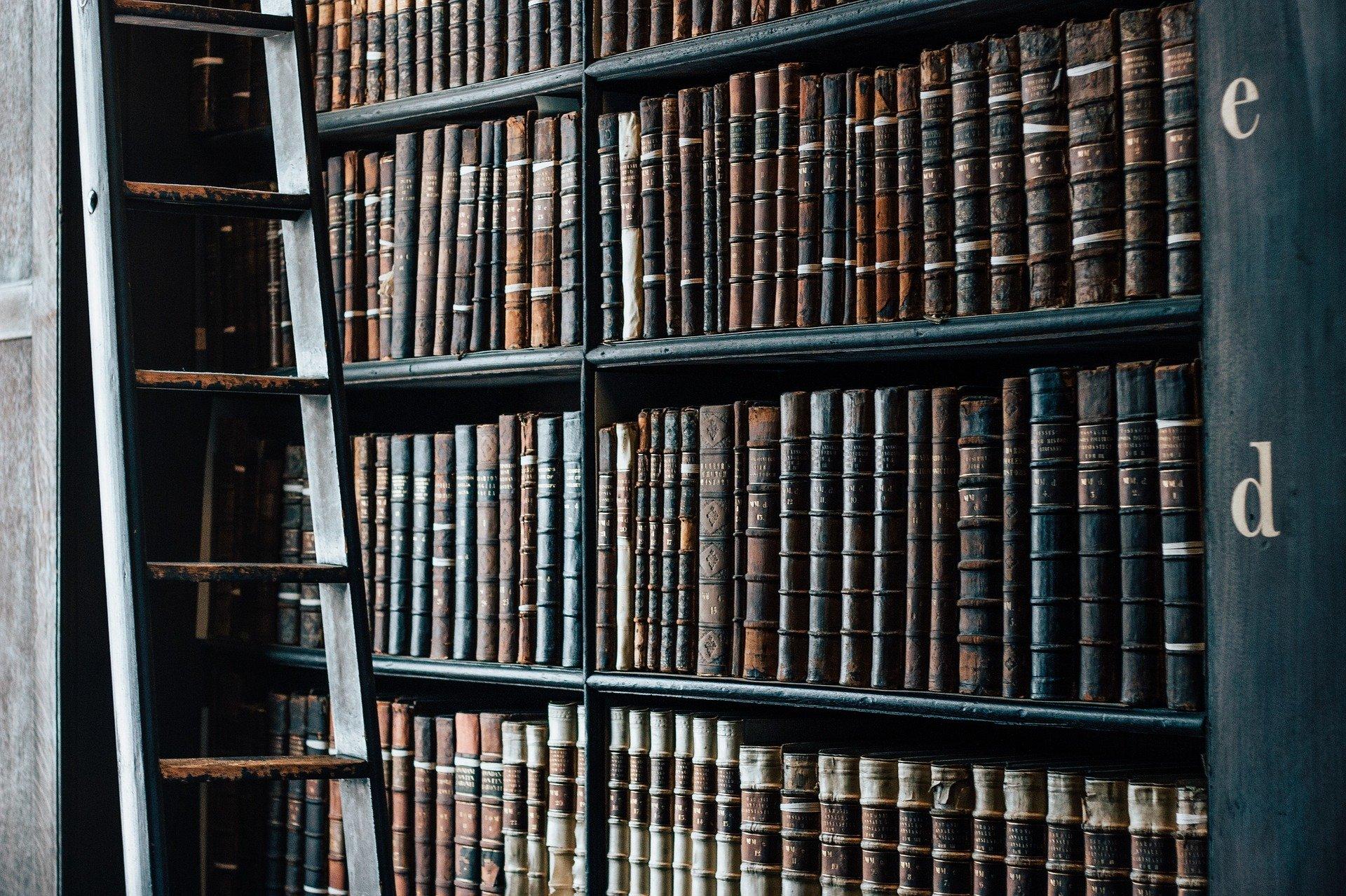 Mussen und Bibliotheken