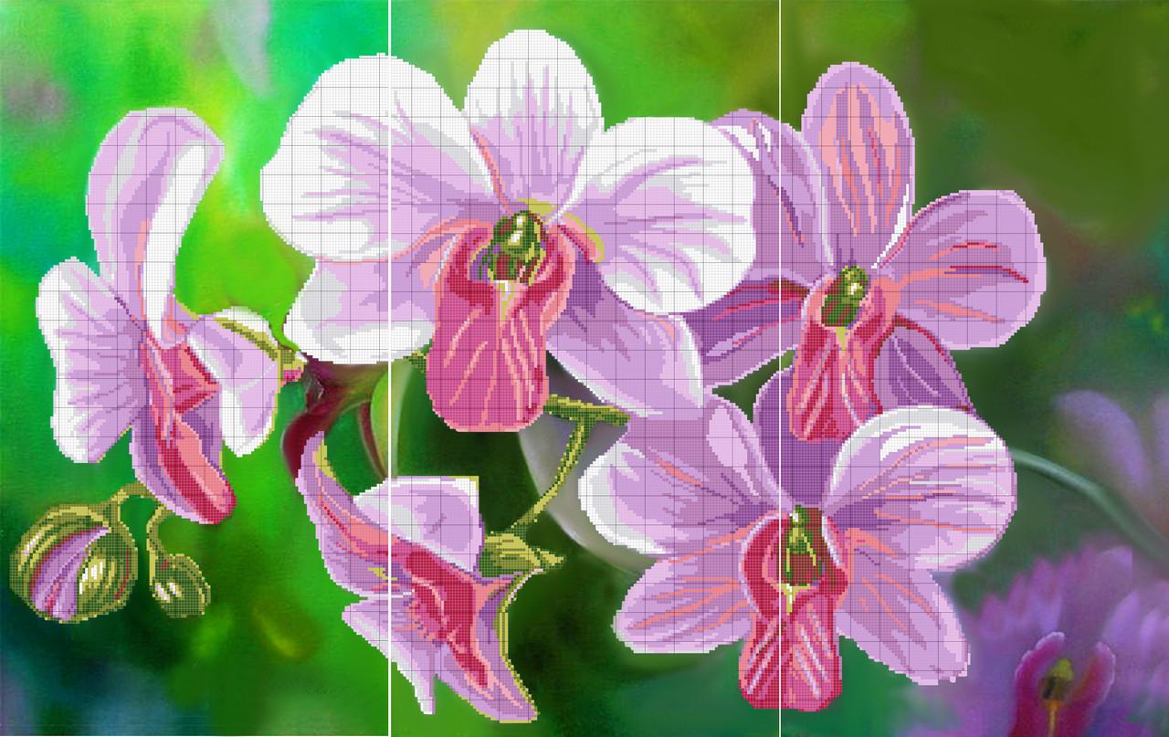 вишивка бісером схема орхідеї