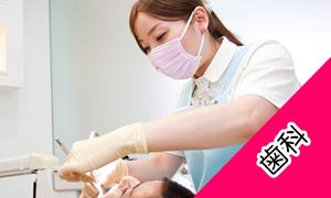 歯科の看護師求人の探し方