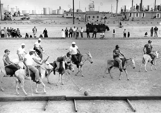 A Polo game using donkeys.