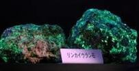 燐カイ石、放射線は紫外線で発光します。この僅かな粒子を回収すると濃度の高いウランができます。金くらい高価です。日本の産地:福島県伊達郡川俣町第二水晶山  ラジウム鉱石の採取地としてマニアから注目されています。