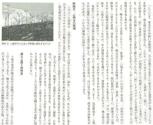 日本の土 地質学が明かす黒土と縄文文化 著者山野井 徹