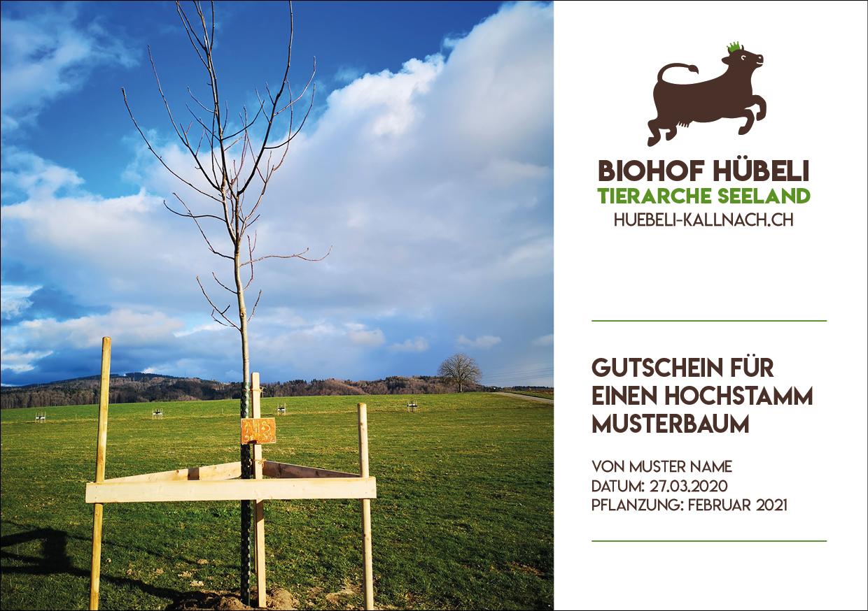 Baumpatenschaft Hübeli Kallnach