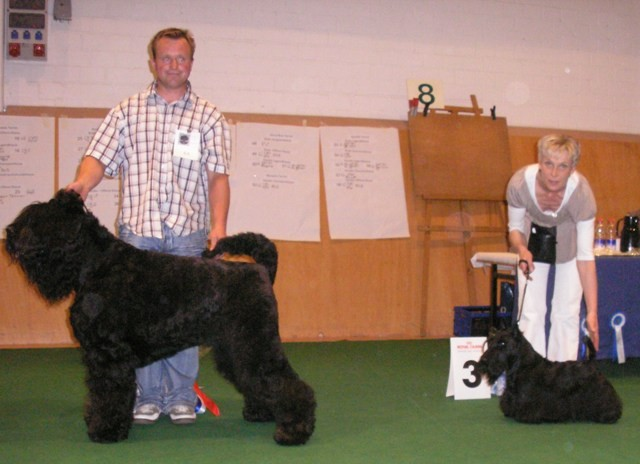 2. Best in Show, der Schwarze Terrierund 3. Best in Show der Scottish Terier