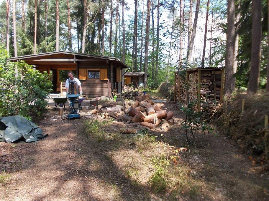 Und wir haben Holz für unseren Ofen im Überfluss.