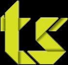 Die Team Solution GmbH Logo