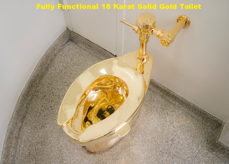 18 Karat Gold Toilet. Repair or replacing of toilets.