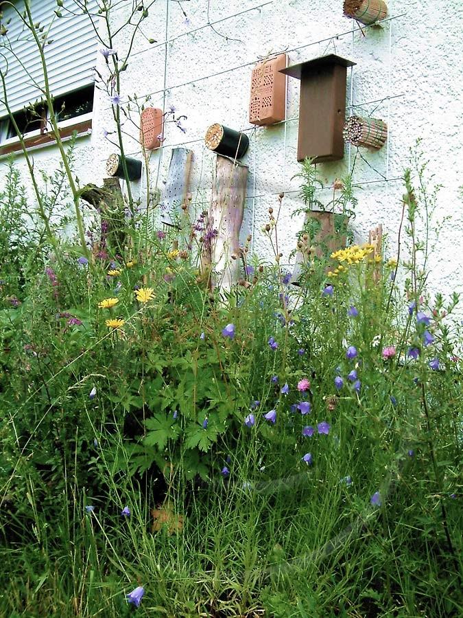 Nisthilfen sind vor allem dann sinnvoll, wenn sie mit einem reichhaltigen Blütenangebot einheimischer Wildpflanzen kombiniert werden