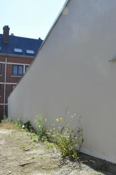 Le mur recrépi et repeint