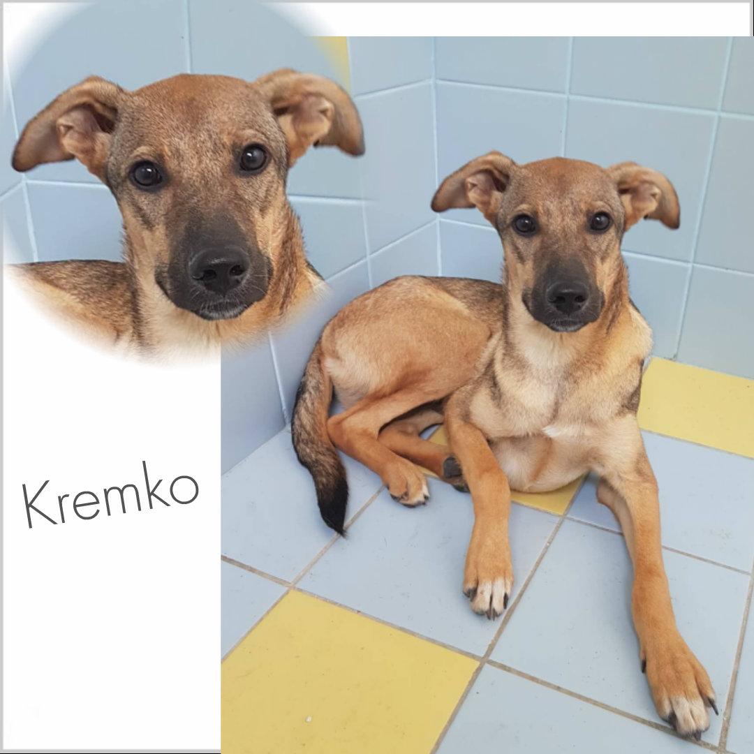 Kremko
