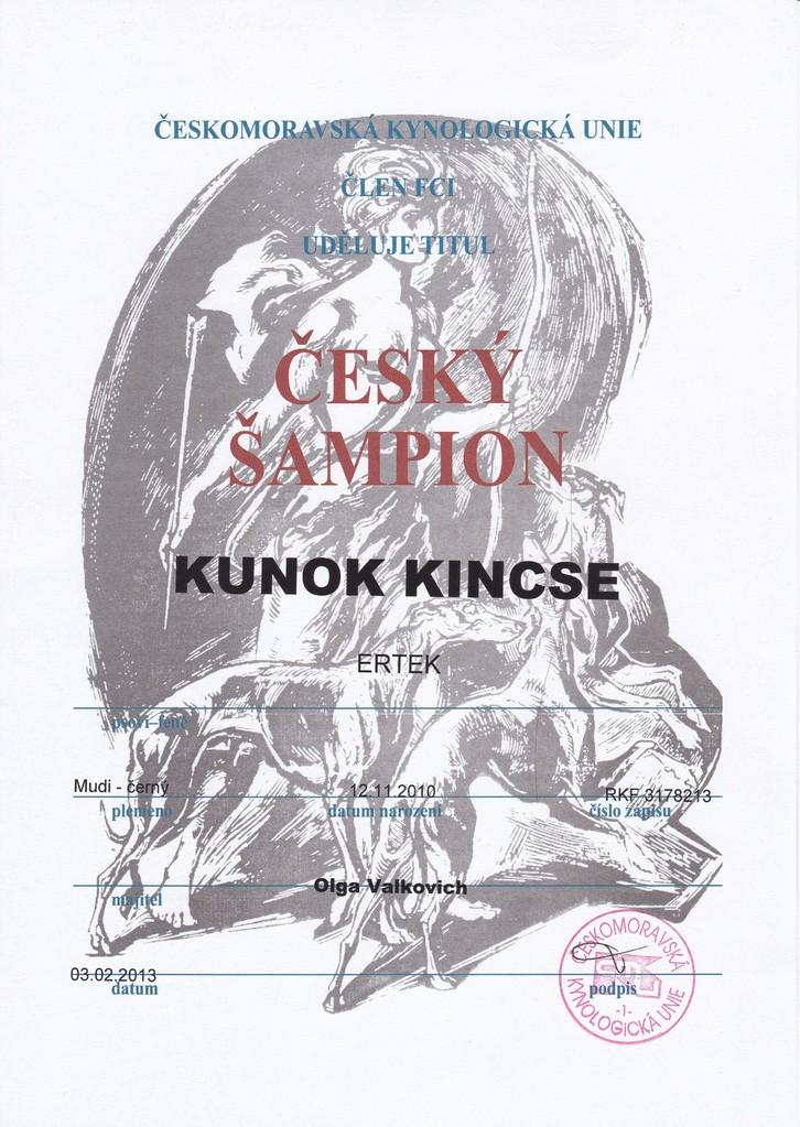 Чемпион Чехии