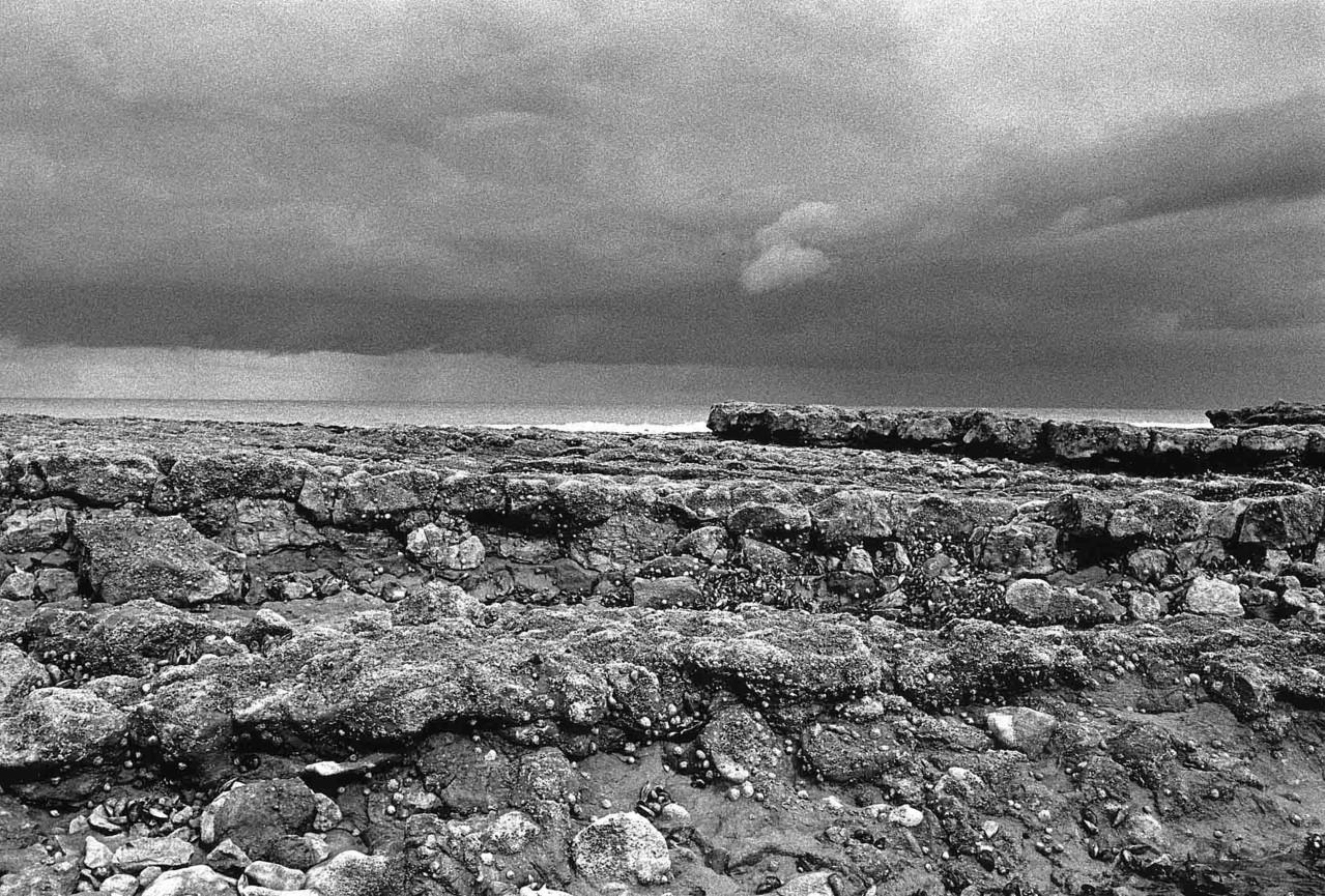 Entre Longues-sur-mer et Arromanches