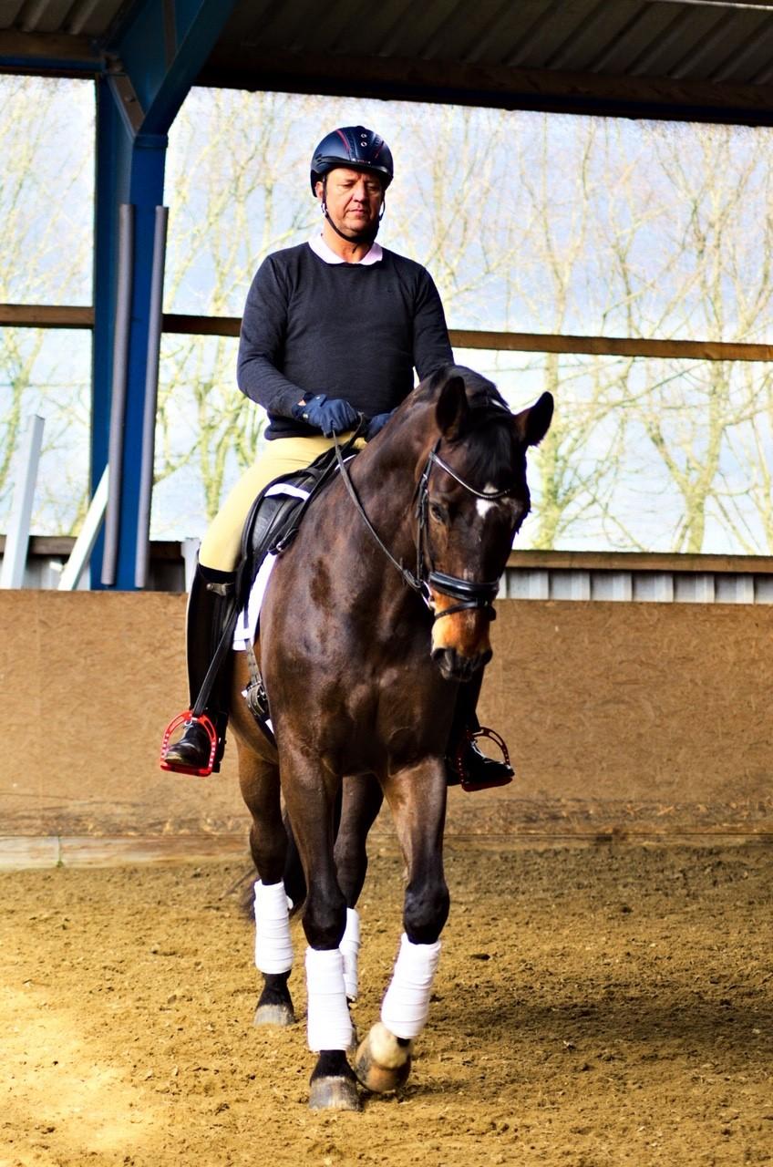 Pferdewirtschaftsmeister Heiko Engbrox mit Benito Blue.