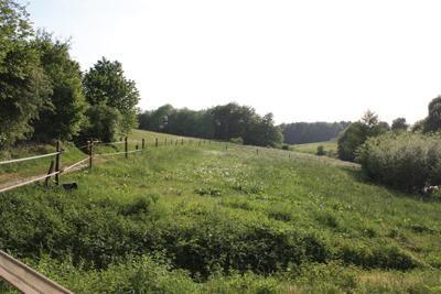 Große Weideflächen für individuelle Weidegruppen