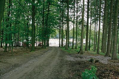 Weg zum Waldplatz