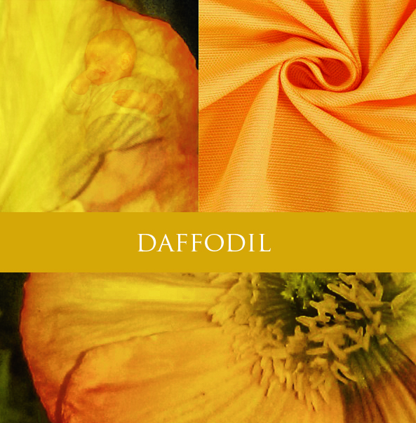 Wombagee Modell Daffodil