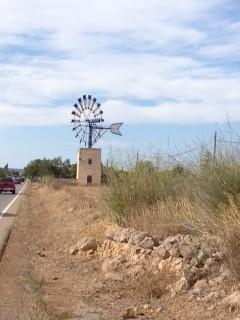Windmühle Mallorca - Urlaub ab 50plus