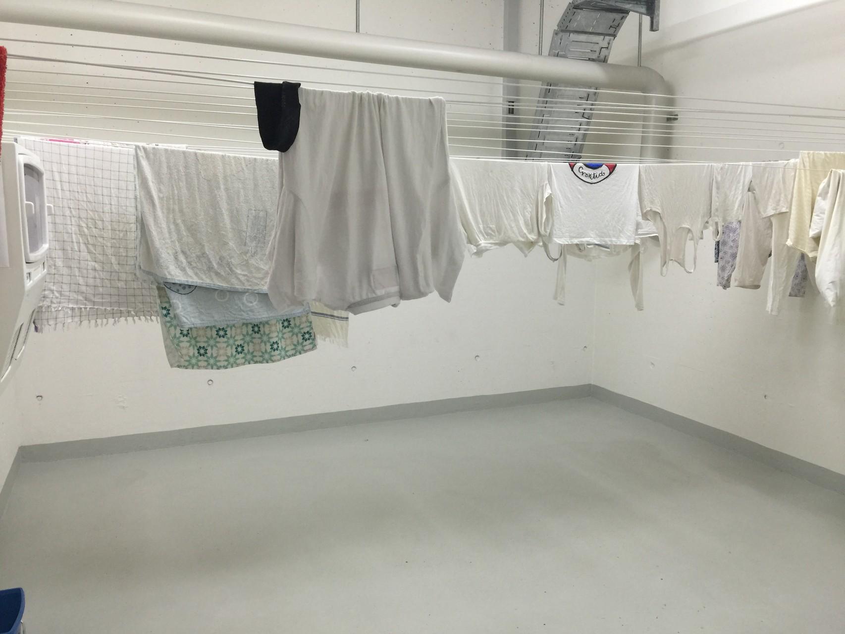 Trockenraum - auf dem Boden liegen jede Menge tote Bettwanzen, die die Wäsche NICHT übrlebt haben.