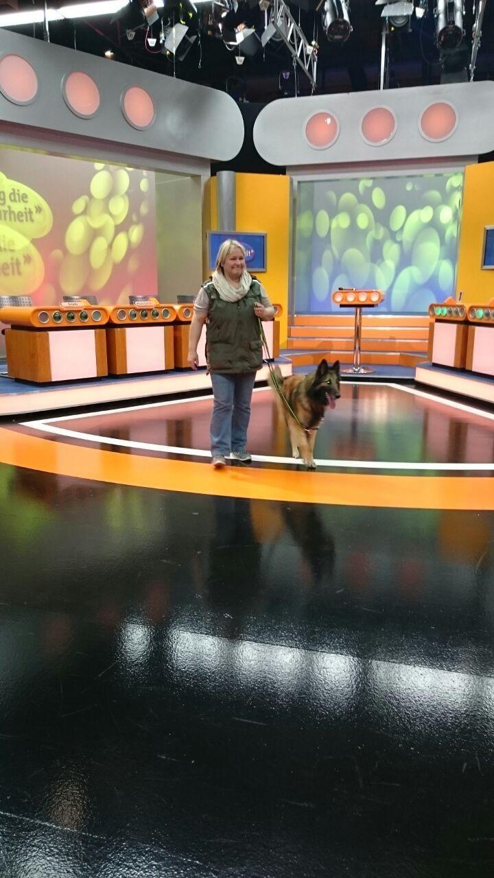 Hundeführer und Hund können zusammen das Studio erkunden.