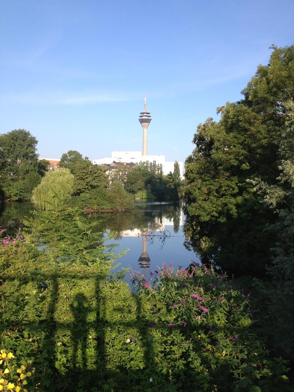 ランナーも多く見かける憩いの場「白鳥の公園」