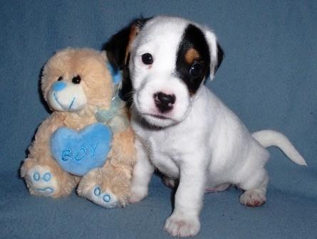 Xavi Jones, 5 weken oud