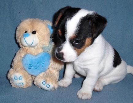 Xandro Joe, 5 weken oud