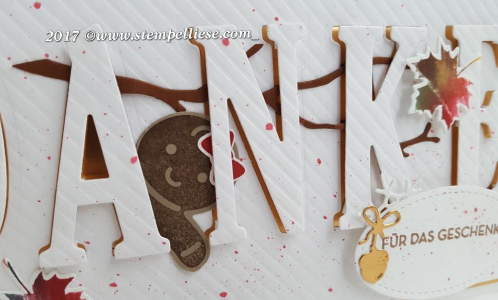 #herbstimpressionen #stempelliese.com #stampinup #ausjederjahreszeit