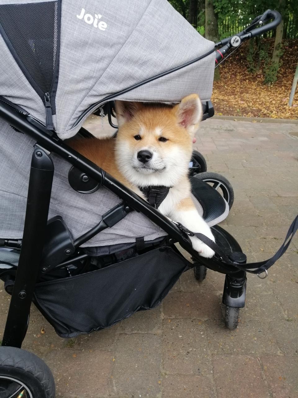 Yumiko im Hansapark