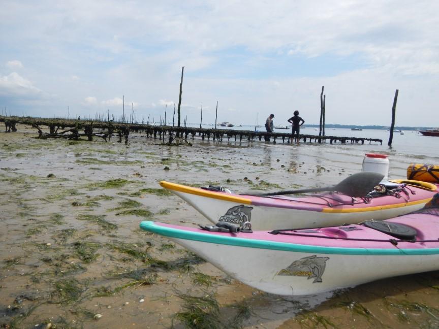 Près des bancs d'huîtres, à marée basse, le temps pour échanger avec les locaux