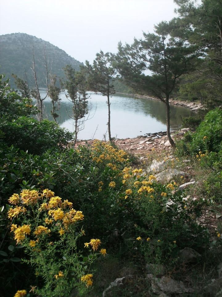 Le lac Mir. L'occasion d'une nouvelle virée à terre