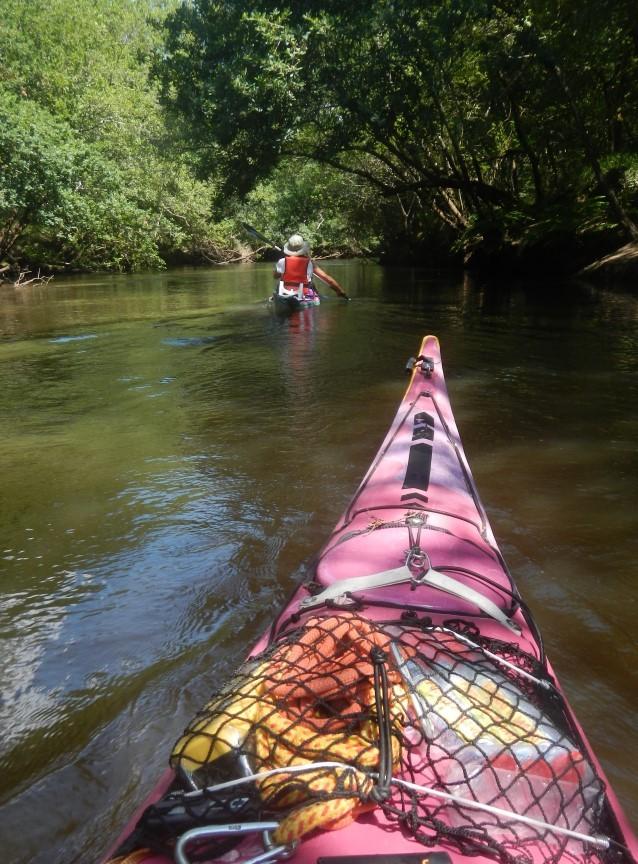 Nos kayaks de mer vont bientôt rejoindre les eaux saumatres du delta de l'Eyre