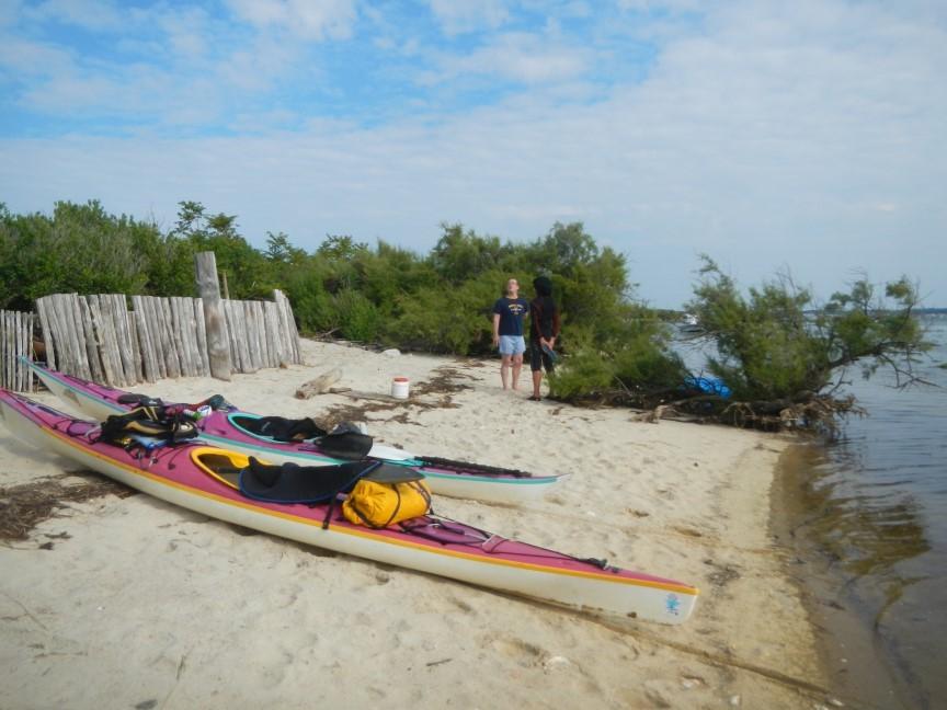 Avant, un dernier échouage, au plein mer, pour se faire accueillir à l'île aux oiseaux