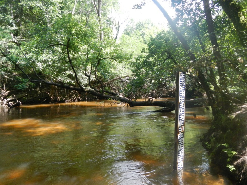 A chaque pont, une échelle de niveau d'eau !