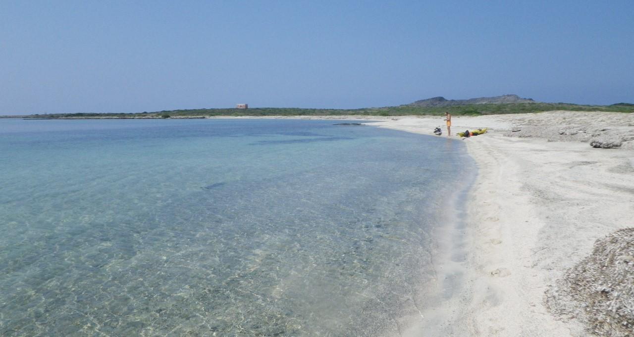 Au sud d'Asinara, soleil de plomb et pas d'ombre. Un bain ?
