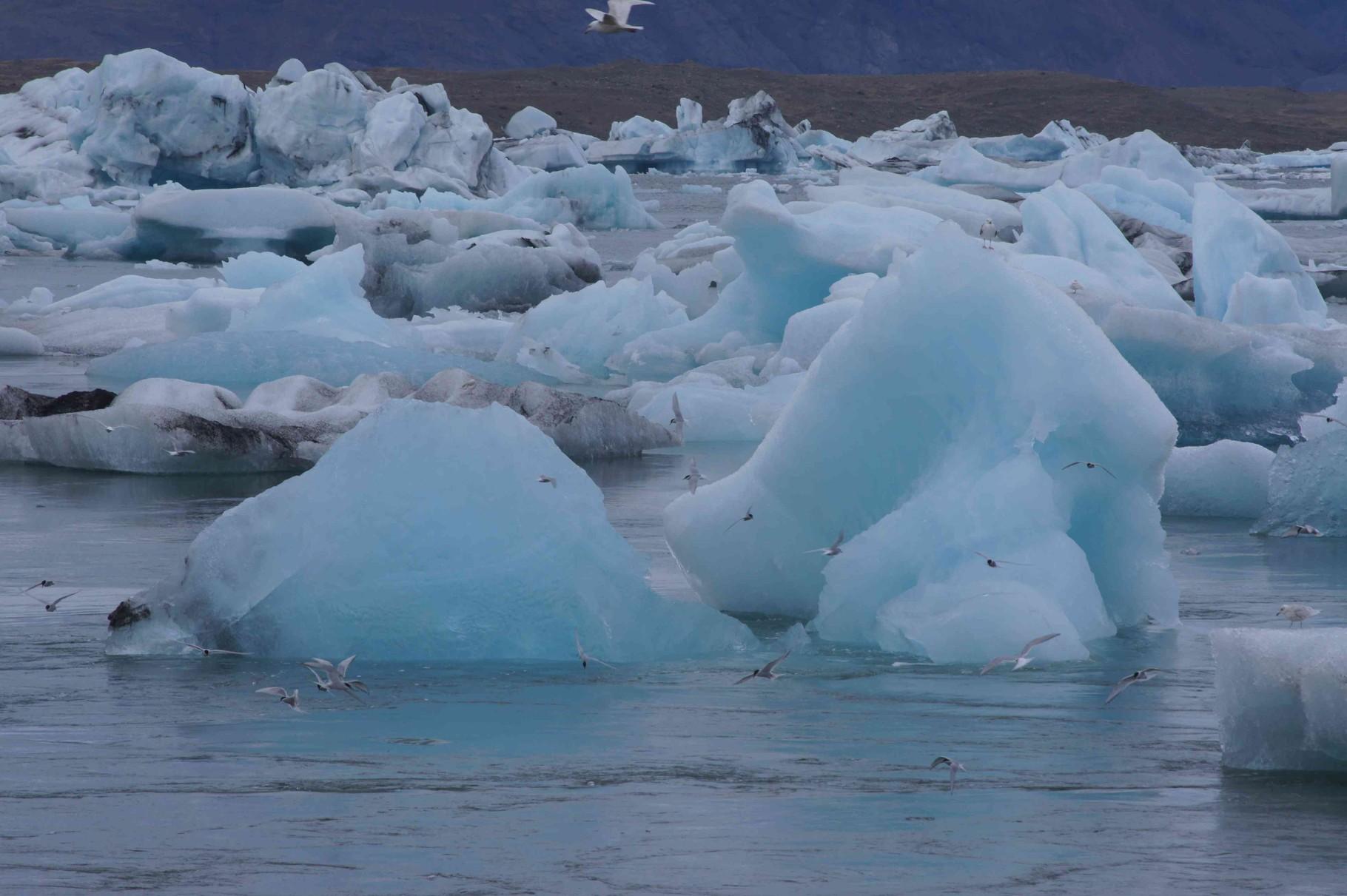 Faszinierende Farbspiel der Eisschollen