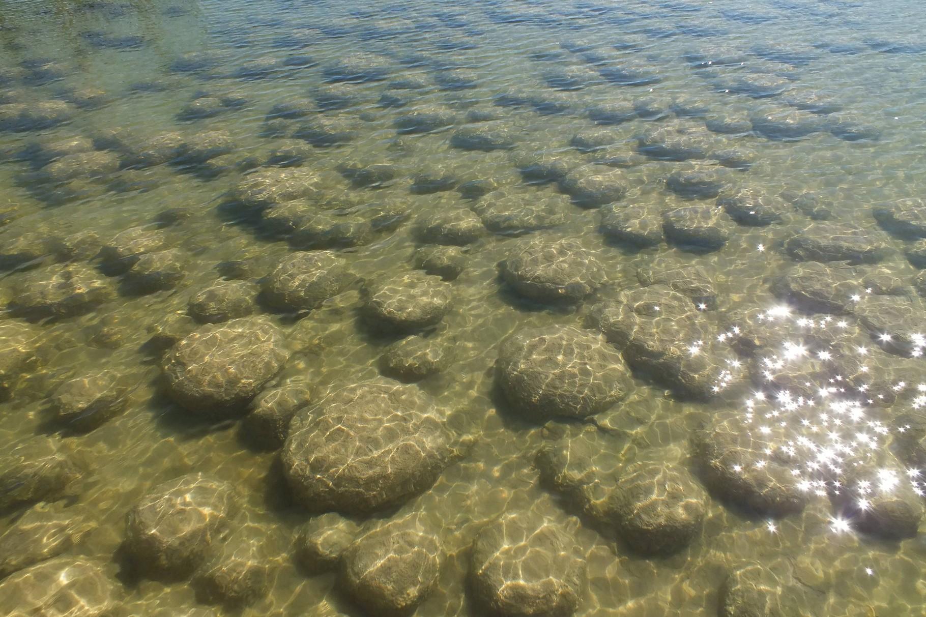 Thromboliten - wachsende Steine - nördlich von Bunburry