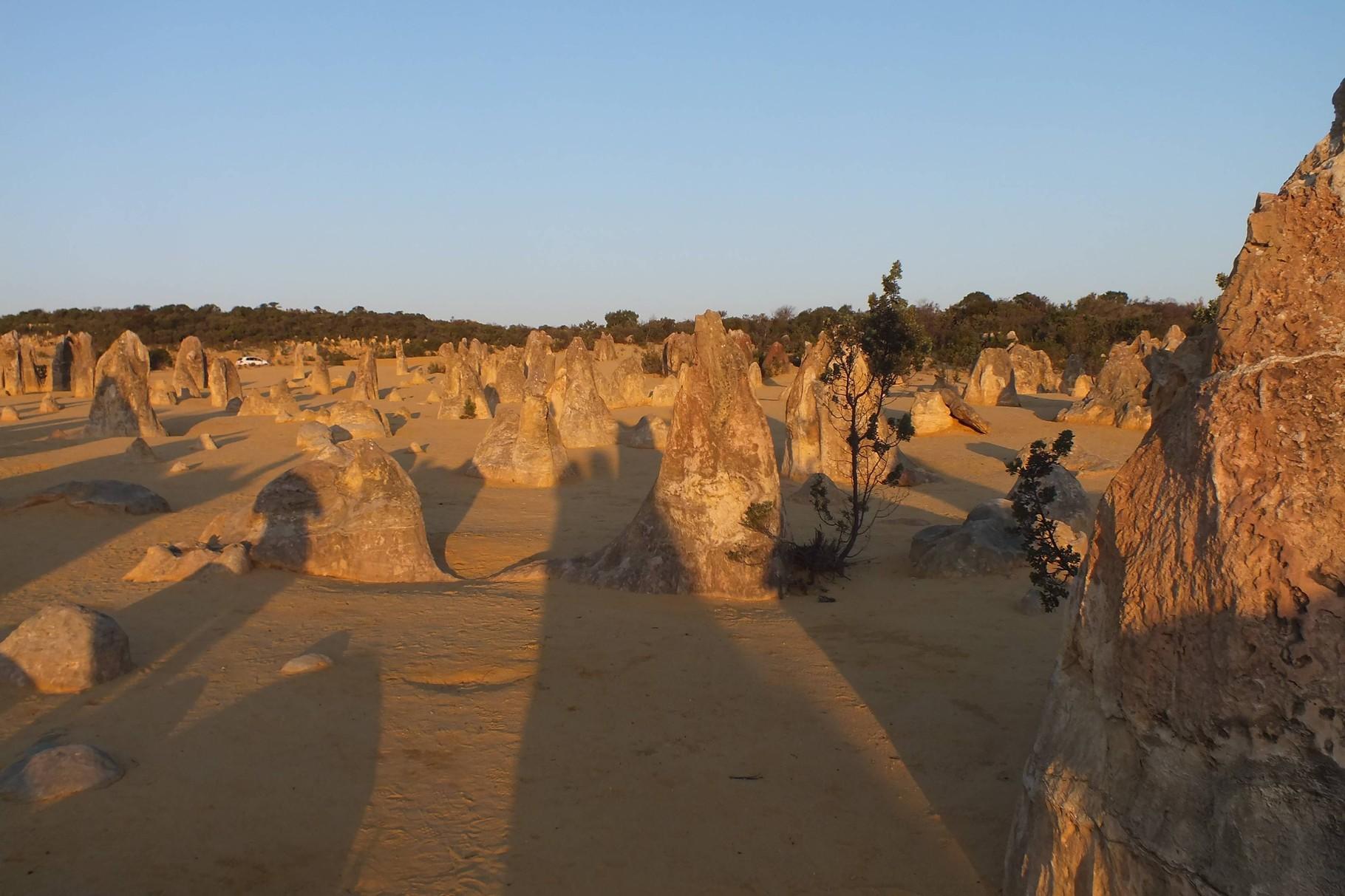 Abenddämmerung bei den Pinnacles, Western Australia